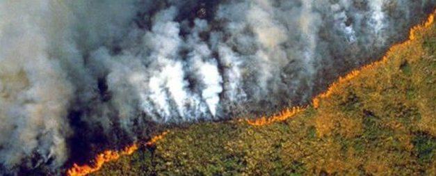 Especial «Apoyo a Gran Canaria»: Dos incendios mortales