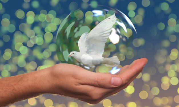 Especial Día de La Paz 2020: «Describamos La Paz», por alumnos de 1º ESO-B