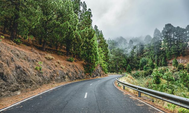 Especial «Apoyo a Gran Canaria»: «¿Quememos o queramos Canarias?