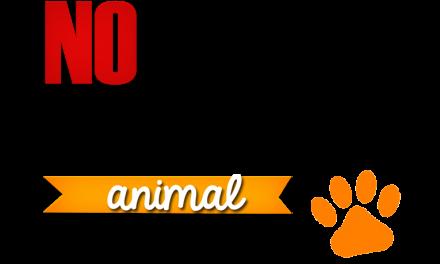 ¡No a los maltratos a los animales y personas!